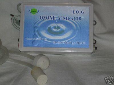 Ozonisator 300 mg/h mit Sauerstoffpumpe